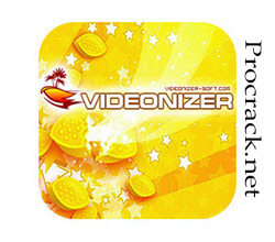 Videonizer Platinum 11.3.0.1 Crack + Activation Key Free Download